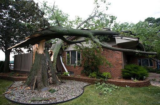 Storm Damage Restoration In Wayne County